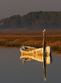 Becky Gregory. A solitary rowboat at sunrise | rowboat, surise, Chincoteagu… | Flickr