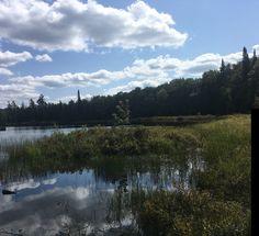 The Welands Pond