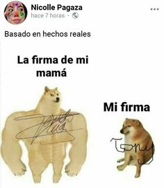 Funny Spanish Memes, Spanish Humor, Crazy Funny Memes, Funny Relatable Memes, Funny Images, Funny Pictures, New Memes, Animal Quotes, Just For Laughs