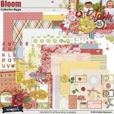 Bloom Collection Biggie