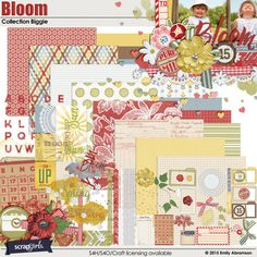 Bloom Collection Biggie