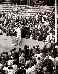 Yankees Roger Maris with the great catch at Yankee Stadium, May 6th, 1962: