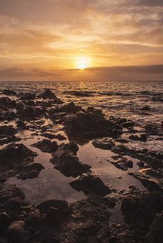 As the sun is about to set over the island of Molokai, Hawaii, golden-orange rays of light bathe the rocky outcrop along Kamaole Beach Park 2 in Kihei, Maui, Hawaii. Starting at $27. #sunset #sunsets #maui #hawaii #travel #photography #photographer #photog #nikon #nature #rocks #picsart