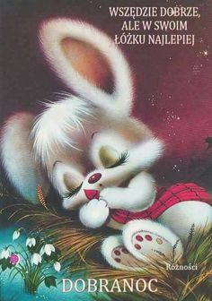 Bunny sleeping cards/scrapebooking påsk, djur e änglar Vintage Cards, Vintage Postcards, Animal Pictures, Cute Pictures, Bisous Gif, Good Night Sweet Dreams, Bunny Art, Cute Illustration, Vintage Pictures