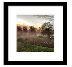 Autumn 2016 in Connecticut. #Autumn #Fog #Landscape http://fineartamerica.com/products/autumn-fog-mike-valletta-framed-print.html