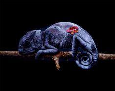 'La Lune' Group Exhibition @ Haven Gallery - beautiful. Animal Art, Canadian Artists, Artist, Fantasy Illustration, Surrealism, Illusion Art, Animal Paintings, Outdoor Art, Contemporary Art