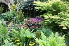 Show garden