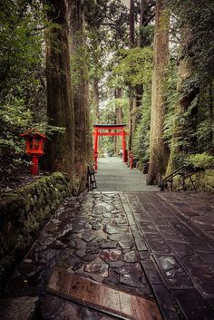 Hakone, Japan - World Traveller Best Places: See more: http://www.brabbu.com/en/inspiration-and-ideas/
