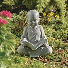 Baby Buddha Studying The Five Precepts Statue by Design Toscano, http://www.amazon.com/dp/B00507TAVS/ref=cm_sw_r_pi_dp_Ef0Lrb0XE60BP