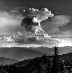 Ansel Adams inspired I would love to own one of his prints. Ansel Adams Photography, Amazing Photography, Nature Photography, Great Photographers, Landscape Photographers, Ansel Adams Photos, Black And White Landscape, Foto Art, Monochrom