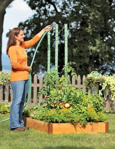 Tomato Watering Stakes | Buy from Gardener's Supply