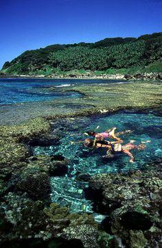 Snorkelling at Lord Howe Island, Australia