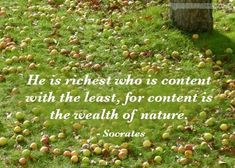 """He is rich who is content with the least, for contentment is the wealth of nature."" (Socrates)"