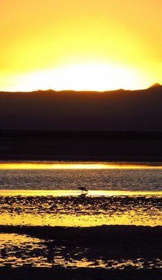 El sol y la laguna by Vero Velez, via Flickr