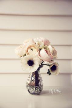 Pretty Anemonies @Beth J J J J J Nativ Hughs