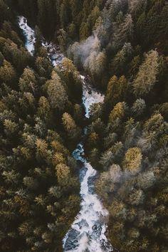 nature. : Photo