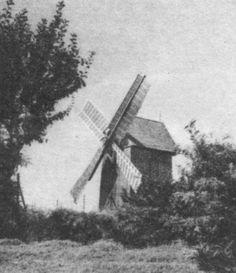 Вітряк у Шевченківському гаю. Фото 1974 року