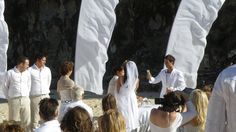 The Toast after the ceremony in Australia Outdoor Weddings, Wedding Vendors, Toast, Australia, Outside Wedding