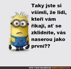 Jokes Quotes, Minions, Quotations, Best Quotes, Haha, Funny Pictures, Facts, Thoughts, Writing
