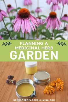 Spring is coming! Start planning your herb garden today. Find out what herbs you need to plant for natural herbal remedies. Here are steps you can use to plan and create your own customized herb garden. Herb Garden Design, Diy Herb Garden, Herbs Garden, Natural Health Remedies, Herbal Remedies, Gardening For Beginners, Gardening Tips, Comment Planter, Growing Herbs
