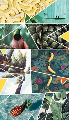 Tropical trend A moodboard is a great way to gather inspiration for your brand design and build a colour scheme. Here is a free moodboard template to help you get started! Web Design, Graphic Design, Banners, Design Graphique, Colour Board, Color Stories, Photomontage, Color Theory, Color Inspiration