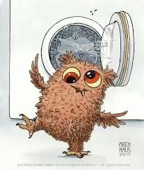 I just went through the fluff cycle on the dryer ... Eugene Arenhaus