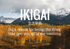 An important distinction is that Ikigai doesn't strictly mean your career or your economic status, but it is representative of all aspects of your life: hobbies, relationships, careers, spirituality, and so on. It is the culmination of your life as a whole.