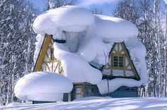 House Buried in Snow | See More Pictures | #SeeMorePictures
