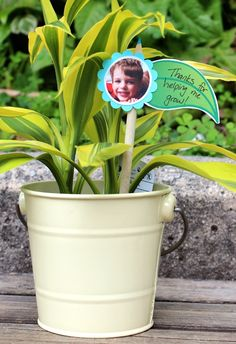 """Thanks for Helping Me Grow"" Plant for a Teachers Gift."