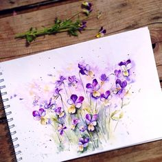 "2,506 Likes, 81 Comments - Elena Moroz⚜️Watercolor (@ihappygirl) on Instagram: ""💜💛garden is still full of Viola Tricolor💛💜"""