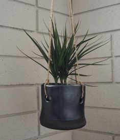 Sexy Black Hanging Planter. Seems like bicycle tire tube
