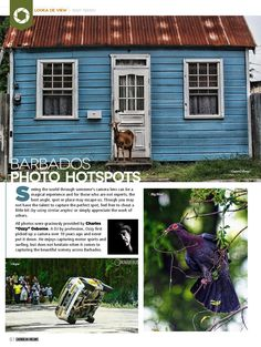Amateur photographer of the month. Ozzy Ozbourne,  has beautiful shots of Barbados.