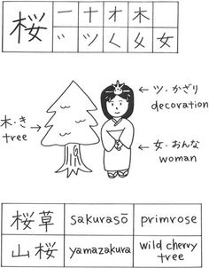 sakura in japanese writing And what script would it be in i am learning japanese, but forgot, whoops and just to clarify does it mean cherry blossom thanks.