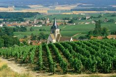 La strada turistica dello Champagne #ViaggiFrancia #ViaggiCitta #CittaFrancia #ViaggiReims #RDVFrance #Rendezvousenfrance