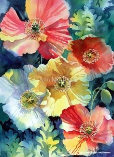 Iceland Poppies Watercolor Painting / Floral Art by Ann Mortimer Art Floral, Watercolour Painting, Watercolor Flowers, Watercolors, Art Amour, Art Aquarelle, Chiaroscuro, Art Design, Botanical Art