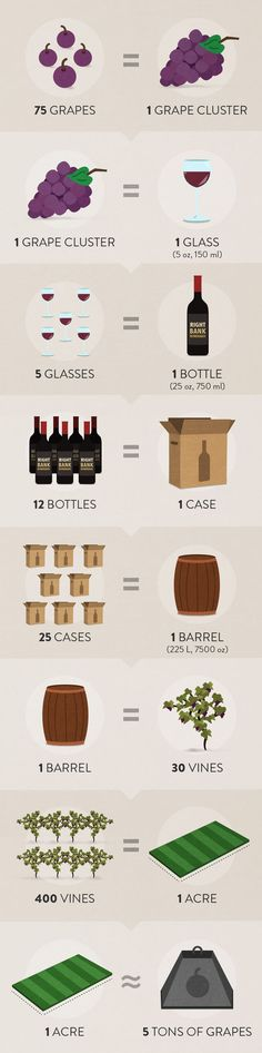 Wine math #infographic #wine #SouthAfrica www.winewizard.co.za/