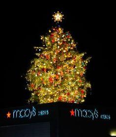 Lighting of Macy's Tree on Thanksgiving night in Atlanta :)