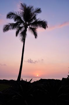 Colorful Hawaii http://www.travelandtransitions.com/destinations/destination-advice/north-america/