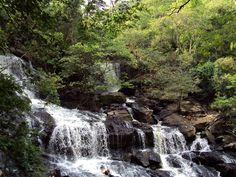 Cachoeira do Roncador (Pirpirituba - PB) A cachoeira do Roncador é visitada pelos amantes da natureza de toda Paraíba e estados vizinhos. Encravada entre os municípios de Pirpirituba, Bananeiras e Borborema, a cachoeira do Roncador é um lençol d'água que desaba de uma altura de 40 metros.