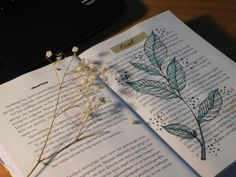 Leafs on a book