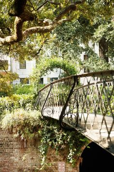 ~• Country Living Magazine: 25 Reasons Why Savannah, GA is the Most Utterly Enchanting Place in the South •~