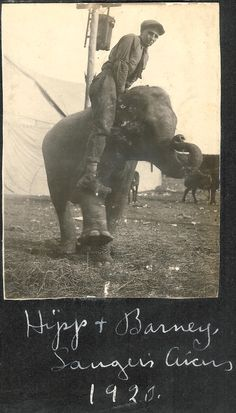 Hipp and Barney - Sanger Circus - 1920 Vintage Circus Performers, Lord John, Street Performance, I 8, Hairspray, Design Reference, Vintage Photographs, Elephants, Behind The Scenes