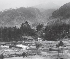 1933年  「京都薬用植物園」