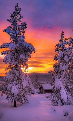 Fire in the sky on a cold winter day. Who would have thought that hot and cold could go so well together? Beautiful Winter Scenes, Beautiful Sunset, Beautiful World, Beautiful Places, Winter Pictures, Cool Pictures, Dawn And Dusk, Winter Scenery, Winter Flowers