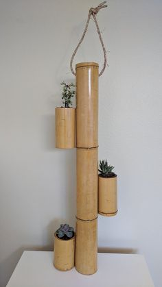 Ideas For Vertical Succulent Planter Diy Pots
