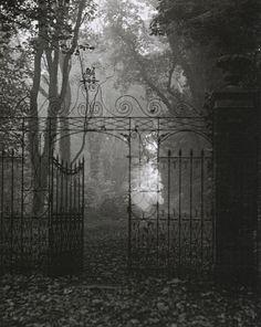Gate, Gothic, Fog