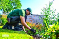 Horticultural knowledge, latest equipment and attention to detail on-site helps Grass Barbers Teams to keep your #grounds maintained to the highest standards. Find out more: www.grassbarbers.co.uk #gardening #garden #maintenance #London #Surrey #Croydon #Bromley #Wandsworth #Merton #Sutton #Epsom