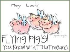 :)I love the little pigs!  Such smart little darlings!  I don't eat any pork products, and wish we had open range farming for all farm animals!