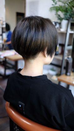 チャン芝ブログのアイドル♪( *´ω`* ) | 鹿児島県 霧島市 美容室 a:rk 店長 芝の美容師日記