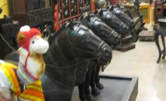 Hanging out with the horses in Bendigo's Chinese Museum